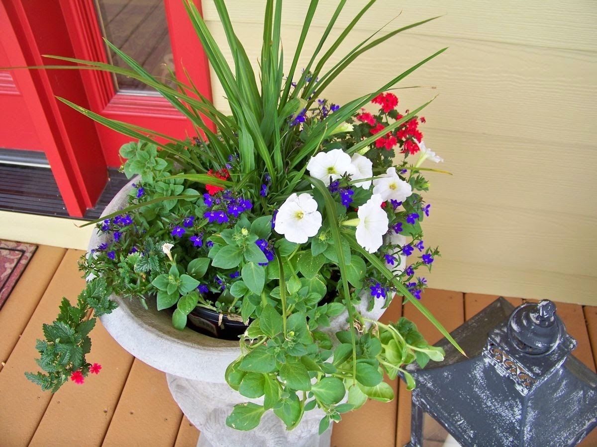 Image of: The Comforts Of Home Front Porch Flowers And Nice Front Porch Flowers